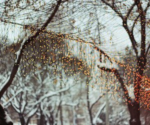winter, lights, and christmas image