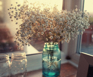 flowers, beautiful, and delicate image