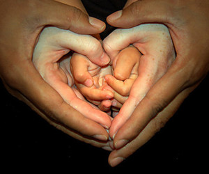 hands and heart image