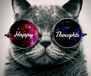 cat, happy thoughts, and quote image