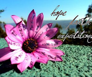 expectation, hope, and pink image