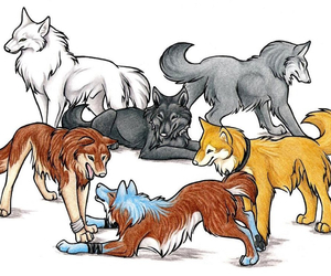 anime, wolves, and wolf's rain image