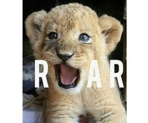 roar, cute, and animal image