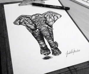 animals, drawing, and elephant image