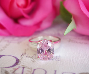 pink, roses, and beautiful image