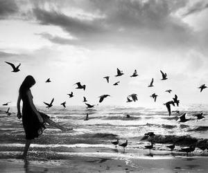 black, girl, and Doves image