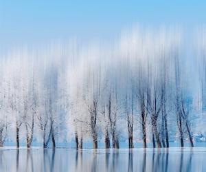 winter, beautiful, and wallpaper image