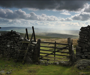 gate, landscape, and photography image