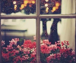 flowers, window, and rain image