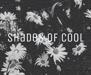 shades of cool, lana del rey, and flowers image