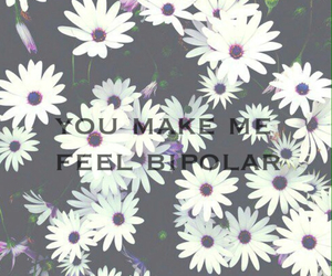 bipolar, boys, and daisies image