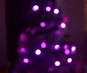 bokeh, christmas light, and christmas tree image