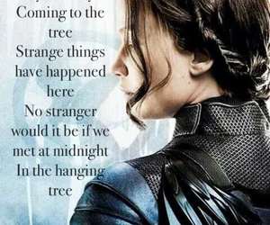 movie, song, and katniss image