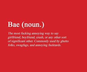 bae, girlfriend, and quote image