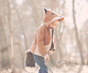 boy, fox, and kids image