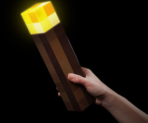 torch and minecraft image