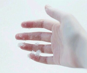snow, hand, and winter image