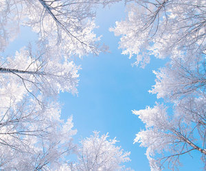 winter, snow, and sky image