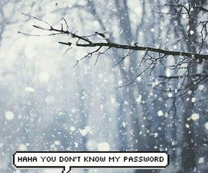snow, winter, and password image
