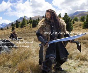 majestic, the hobbit, and fili image