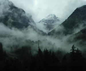 mountains, fog, and nature image