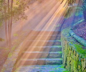 sun, nature, and stairs image