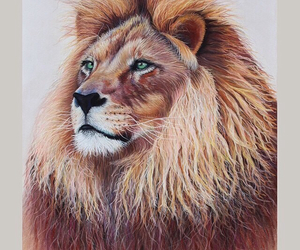 amazing, art, and lion image