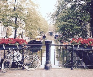 *-*, travel, and amsterdam image