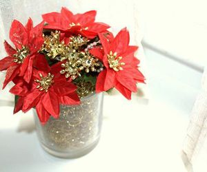 christmas, decor, and flower image