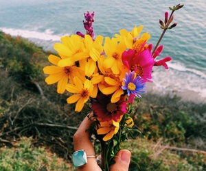 color, wow, and flowers image