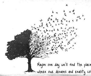 Dream, quotes, and reality image