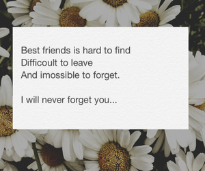 quote and bff image