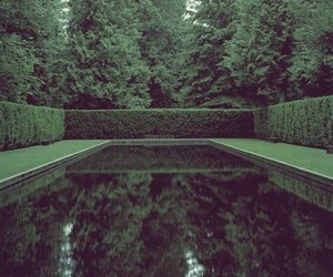 water, green, and nature image