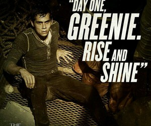 the maze runner, thomas, and dylan o'brien image