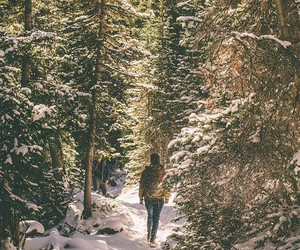 explore, forest, and girl image