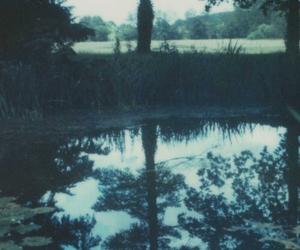 grunge, nature, and tree image