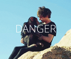 danger, louis tomlinson, and 1d image