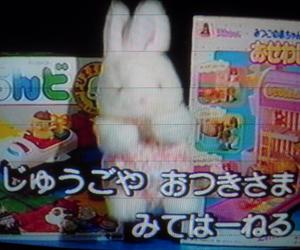 ぬいぐるみ and 玩具 image