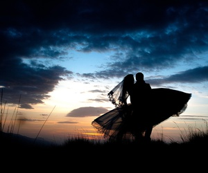 fly, nature, and wedding image