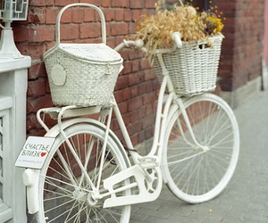 white, bike, and flowers image