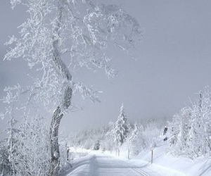 beautiful, winter, and december image