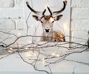 christmas, deer, and winter image