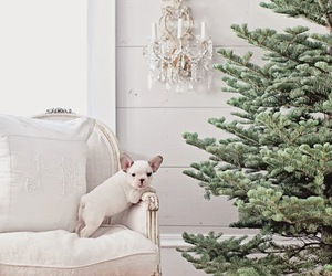 puppy, tree, and christmas image