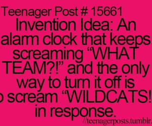 teenager post, wildcats, and teenagerpost image
