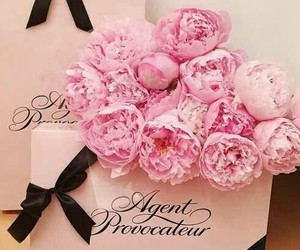 pink, agent provocateur, and flowers image