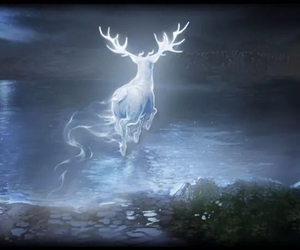 patronus and harry potter image