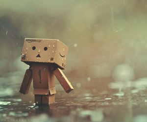 rain, danbo, and alone image