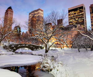 Central Park, christmas, and winter image