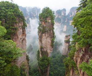 china, nature, and green image