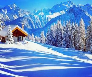 snow, amazing, and winter image